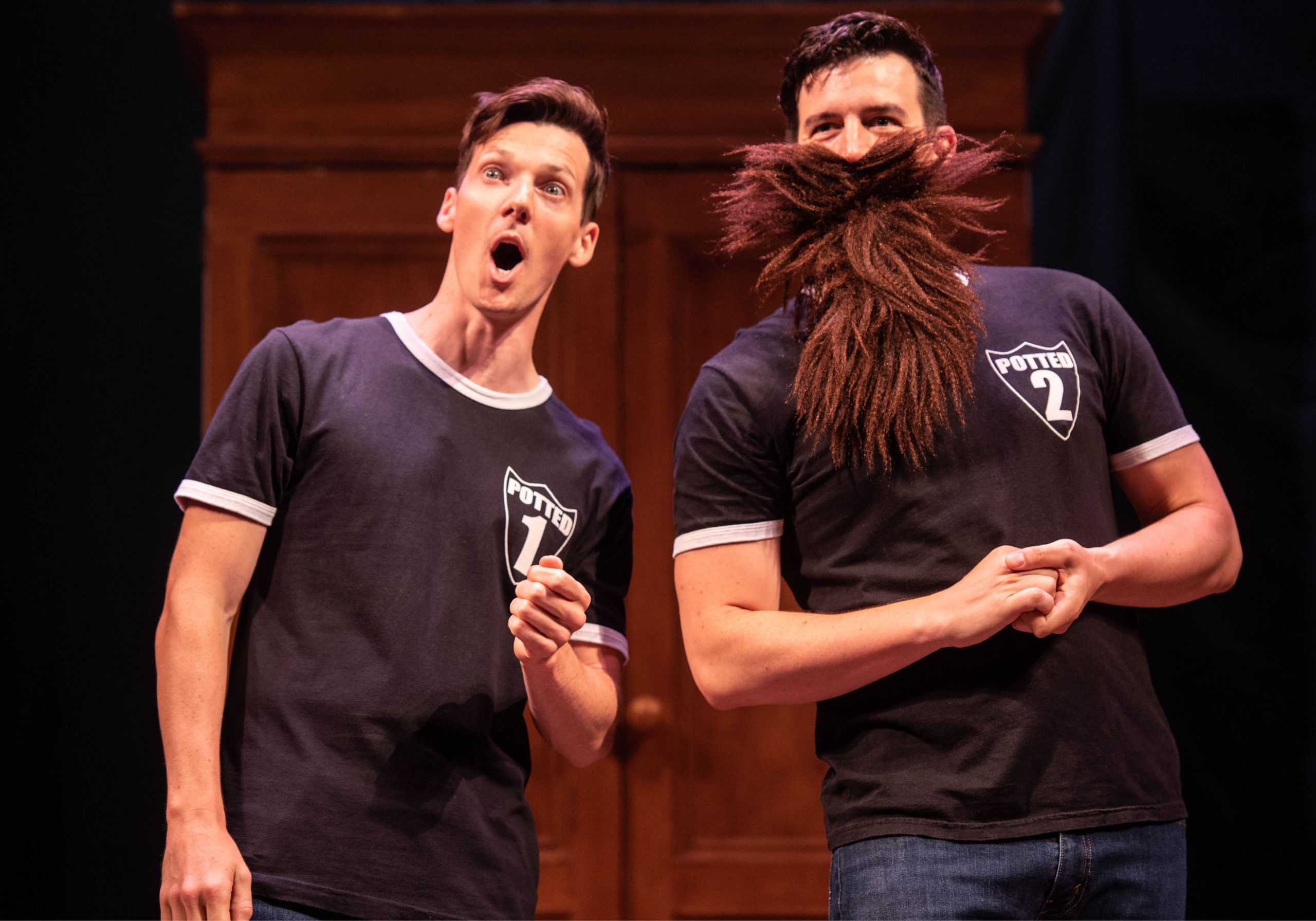 Potted Potted Potter Show Image