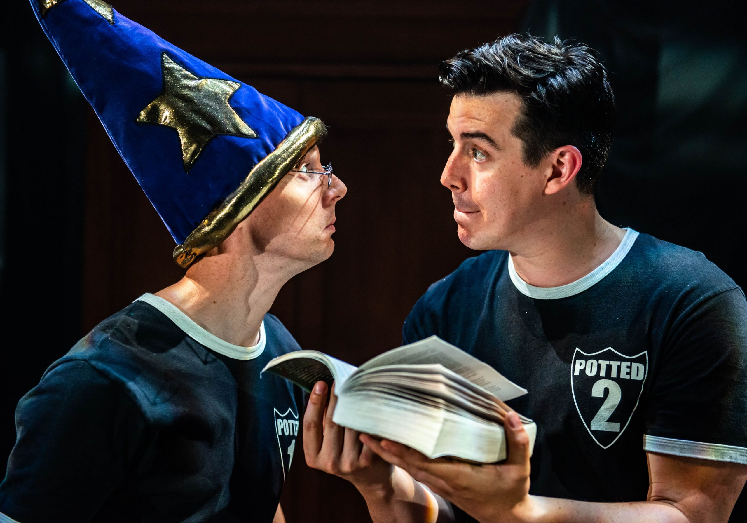 Potted Potter Show Image